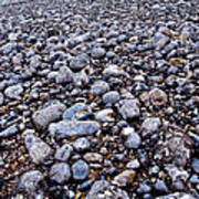 Rocky Beach Normandy France Poster
