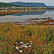 Rocky Harbour-nl Poster