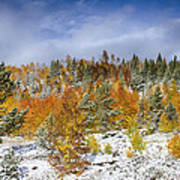 Rocky Mountain Autumn Storm Poster by James BO  Insogna