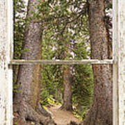 Rocky Mountain Forest Window View Poster