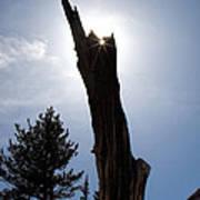 Rocky Mountain Obelisk Poster