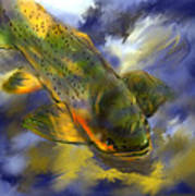 Rocky Mountain Trout  Poster