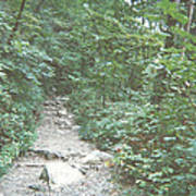 Rocky Path Poster