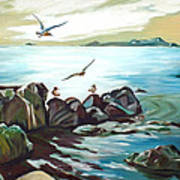 Rocky Seashore And Seagulls Poster
