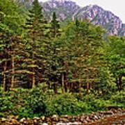 Rocky Shoreline Of Western Brook Pond In Gros Morne Nl Poster