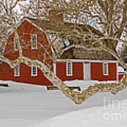 Roger Williams Cottage In Winter Poster