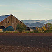 Rogue Valley Barn In Late Afternoon Poster