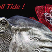 Roll Tide - 14 Time National Champions Poster