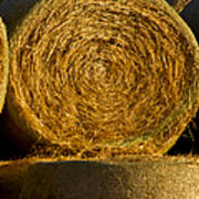 Rolled Hay   #1074 Poster