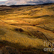 Rolling Hills Poster by Robert Bales
