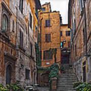 Roman Backyard Poster