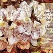 Romans 12 1 Poster