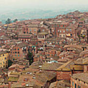 Rooftop View Of Siena Italy Poster