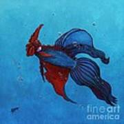 Roosterfish IIi Poster