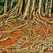 Roots 5 Poster
