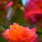 Rose 191 Poster by Pamela Cooper