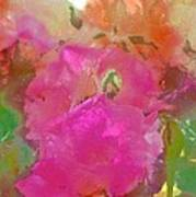 Rose 256 Poster
