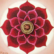 Rose Mandala Poster