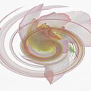 Rose Swirl Poster