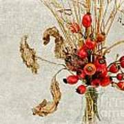 Rosehips And Grasses Poster