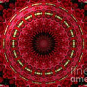 Roses Kaleidoscope Under Glass 12 Poster