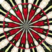 Roses Kaleidoscope Under Glass 17 Poster