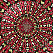 Roses Kaleidoscope Under Glass 21 Poster