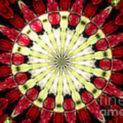 Roses Kaleidoscope Under Glass 23 Poster