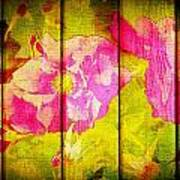 Roses On Wood Poster