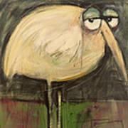 Rotund Bird Poster