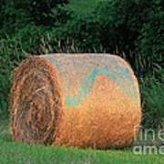Round Hay Bale Poster