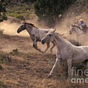 Rounding Up Horses On The Ranch Poster