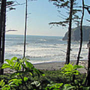 Ruby Beach I Poster