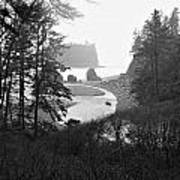 Ruby Beach In The Winter In Black And White Poster