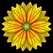 Rudbeckia Prairie Sun I Flower Mandala Poster