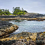 Rugged Coast Of Pacific Ocean On Vancouver Island Poster