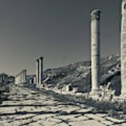 Ruins Of Roman-era Columns Poster