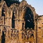 Ruins Of St. Mary's Abbey Poster