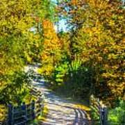 Runner's Path In Autumn Poster
