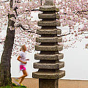 Running By The Tidal Basin Poster