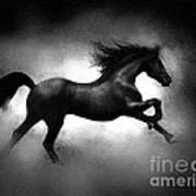 Running Horse Poster by Robert Foster