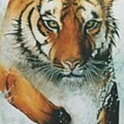 Running Tiger Poster