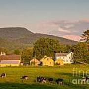Rupert Vermont Dairy Farm Poster