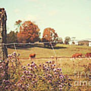 Rural Country Scene Poster