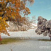 Rural Early Snow In Western Colorado  Poster