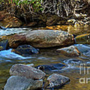 Rushing Mountain Stream Poster