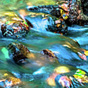 Rushing Water Over Fall Leaves Poster