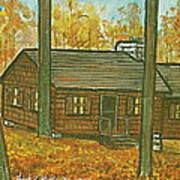 Rustic Cabin At Lake Hope Ohio Poster