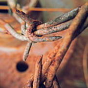 Rustic Rust Poster
