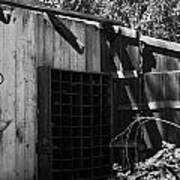 Rustic Shed Poster